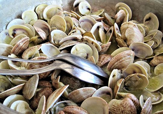 restaurant de fruits de mer Carqueiranne Hyeres-huitres Carqueiranne Hyeres-fruits de mer a emporter Carqueiranne La Garde-vente de coquillages Carqueiranne Toulon